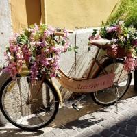bicycle_2086932_960_720.jpg