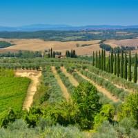tuscany_4845530_1920.jpg